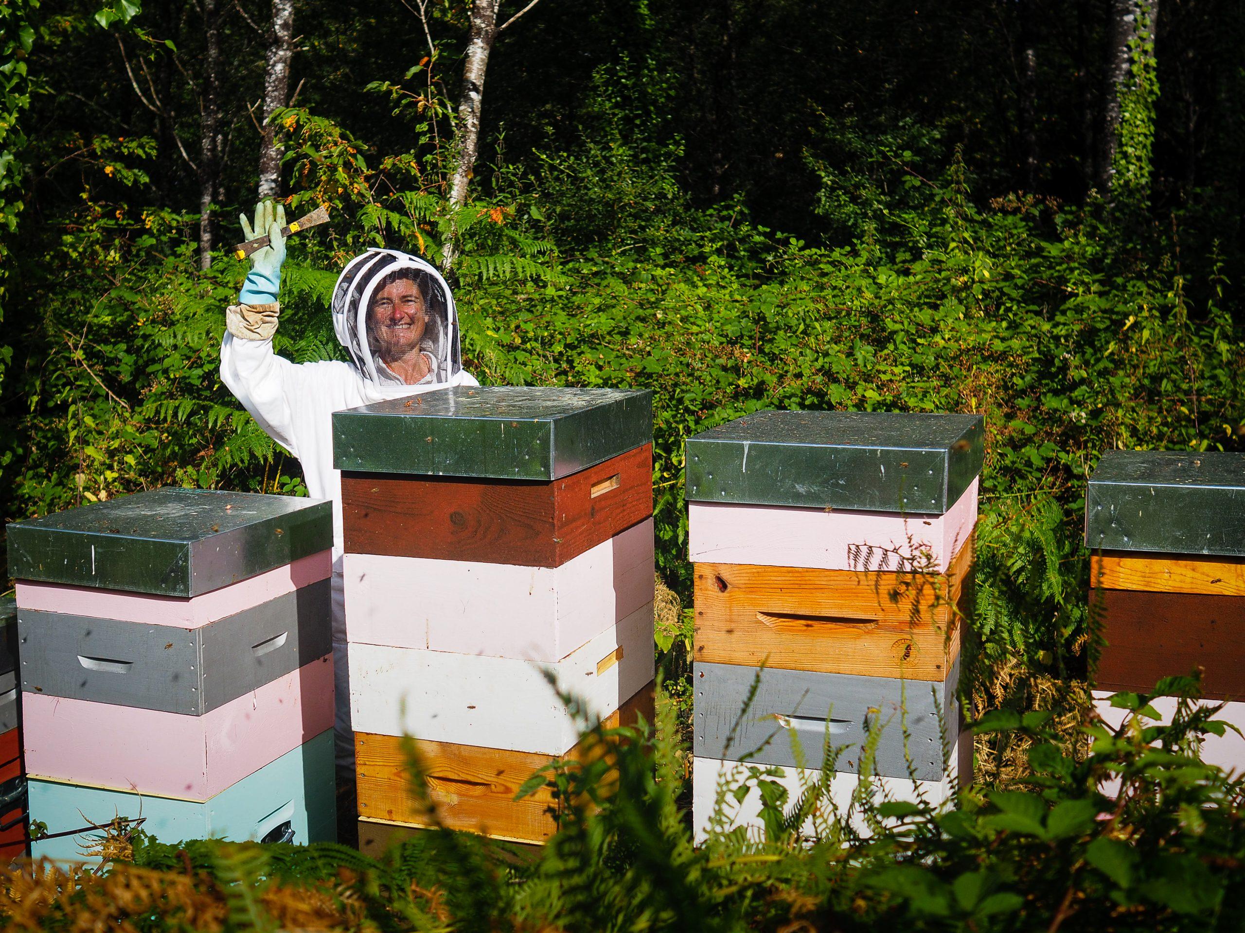 Les ruchers d'Anne-Sophie